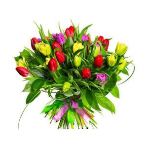 tulipani multicolore