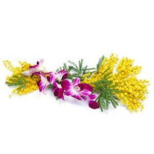 Mimosa con orchidea